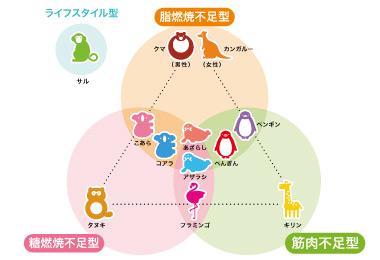 肥満関連遺伝子の特徴
